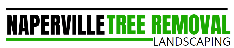 Naperville Tree Removal Landscaping
